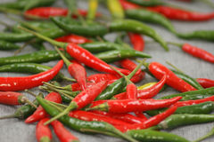 Green and red hot organic chili Stock Photos