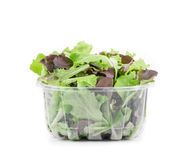 Green and red leaf of lettuce in box. Royalty Free Stock Images