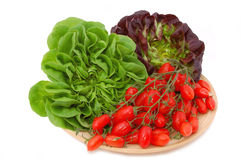 Green and red lettuce and cherry tomatoes. Plate with red and green lettuce and cherry tomatoes isolated Royalty Free Stock Photography