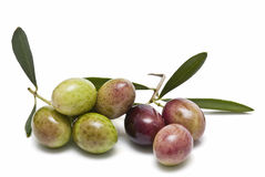 Green and red olives. Royalty Free Stock Photos