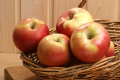 Green and red organic apple Stock Image