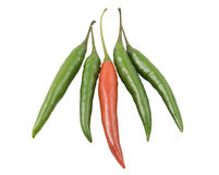 Green and red pepper. Red pepper chili lies between green pepper Royalty Free Stock Photo
