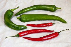 Green and red pepper chili Royalty Free Stock Image