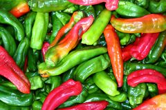 Green red pepper pattenr coloful vegetables Stock Image