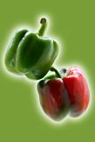 Green and red  peppers Royalty Free Stock Image