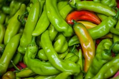 Green and Red Peppers. Lots of peppers in the market Royalty Free Stock Photo