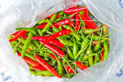 Green and red peppers. Stock Photo