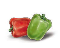 Green and red peppers on white. Green and red peppers  on a white background. High resolution of the digital illustration Royalty Free Stock Images