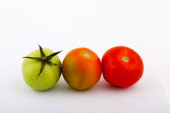 Green and red tomatoes Royalty Free Stock Photos