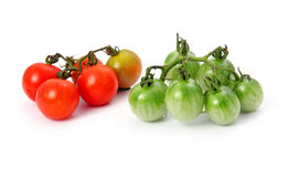 Green and red tomatoes vegetables isolated Royalty Free Stock Images