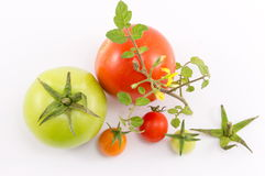 Green and red tomatoes on white background Stock Photo