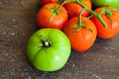 Green and red tomatoes on a wooden background Royalty Free Stock Photos