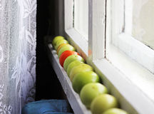 Green and red tomatos on the window sill Royalty Free Stock Photos