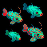 Green-red tropical fish, four icon cartoon vectors Stock Photo