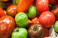 Green and red varieties of tomatoes Stock Photos