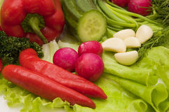 Green and red vegetables. Radishes, peppers, cucumber, onions, garlic - ready for salad Stock Image
