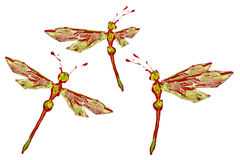 Green red white paint made dragonfly set. Three positions vector illustration
