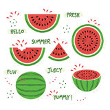 Green and red whole and sliced juicy summer watermelon icons set Stock Photos