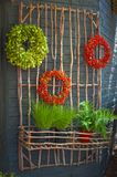 Wreaths and potted plants on stick structure. Green and red wreaths made from plants hang on a stick structure which also holds potted plants on an outside wall Stock Photography