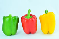 Green red yellow pepper Royalty Free Stock Image