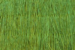 Green reed texture wallpaper or background Stock Photos