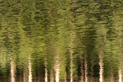 Green reflection Royalty Free Stock Photos