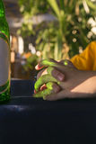 Green reflections of a beer bottle on folded hands Stock Photo