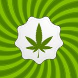 Green retro cannabis design element Stock Image