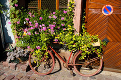 Green Revolution. Old bicycle covered and emerged in green plants and flowers, France Royalty Free Stock Photos