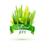 Green ribon with natural emblem and grass Royalty Free Stock Photos