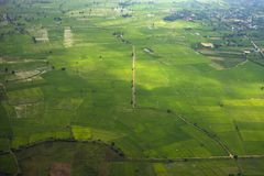 Green rice field area with the road pass through from top view. Green rice field with the road pass through from top view royalty free stock photography