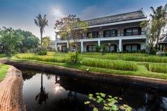 Green rice field in the villa,Thailand Stock Photo
