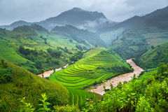 Green Rice fields on terraced in Mu cang chai Royalty Free Stock Photography