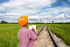 Green rice fields. The way of  train through the wide green fields of the countryside Stock Images