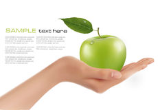Green ripe apple in a hand. Vector Stock Photography