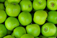 Green ripe apples Royalty Free Stock Photo