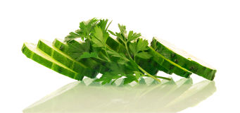 Green ripe Cucumber slices Stock Photo