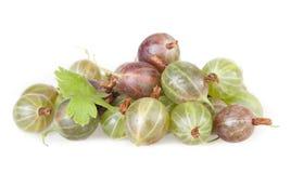 Green ripe gooseberries Royalty Free Stock Photography