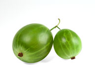 Green Ripe Gooseberries Stock Photography