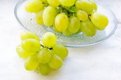 Green ripe grapes in plate Royalty Free Stock Image