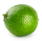 Green ripe juicy lime. Isolated on white background Stock Photography