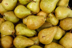 Green ripe pears. HQ photography of ripe pears Royalty Free Stock Image