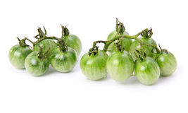 Green ripe tomatoes vegetable isolated Royalty Free Stock Photos