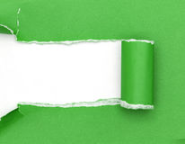Green ripped open paper on white paper background. Royalty Free Stock Image