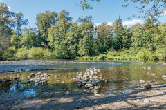 Green River бежать низко Стоковое фото RF