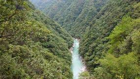 Green River в долине Iya в Японии Стоковые Фотографии RF
