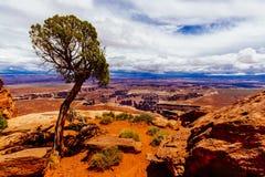 Green River обозревает, национальный парк Canyonlands, Юта, США Стоковое Изображение