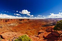 Green River обозревает, Canyonlands, национальный парк, Юта, США Стоковое Изображение RF