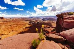 Green River обозревает, Canyonlands, национальный парк, Юта, США Стоковые Изображения RF