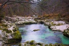 Green River Royaltyfri Foto